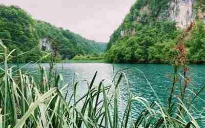חלום קסום בטורקיז ומנגינת פכפוך מים
