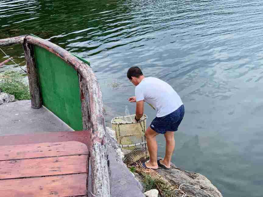 מסעדה אוטנטית באגם סקאדר, מונטנגרו