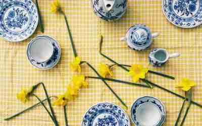 חגיגת שיבורי אביבית