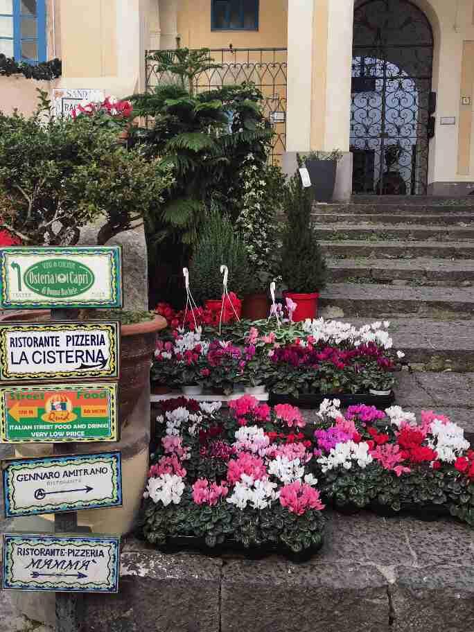 מרכז קאפרי דרום איטליה