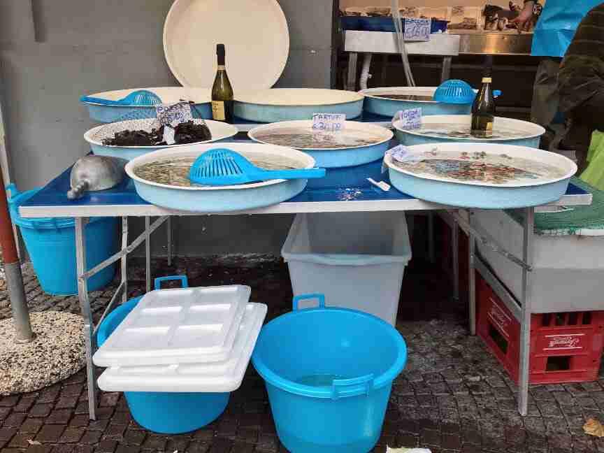 נאפולי - חנות דגים