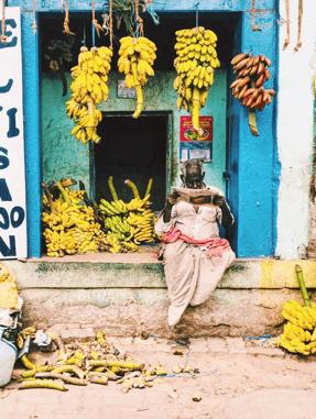 צבעוניות עירונית - מדוראי