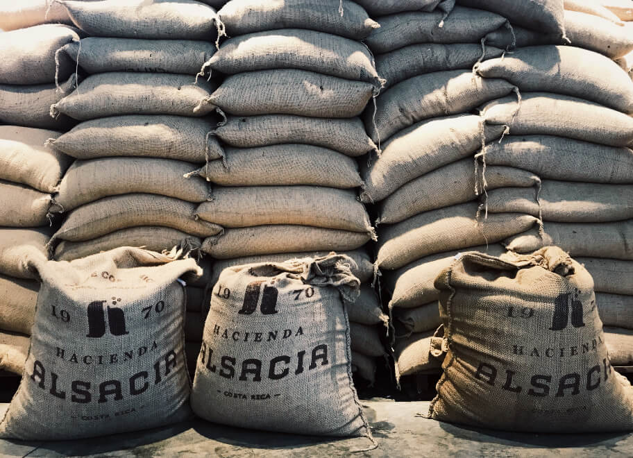 שקי קפה בקוסטה ריקה