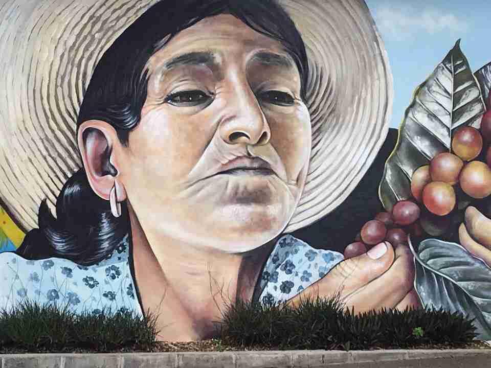 סטארבקס כוס קפה בקוסטה ריקה. חוות אסיינדה אלזסיה. ציור קיר