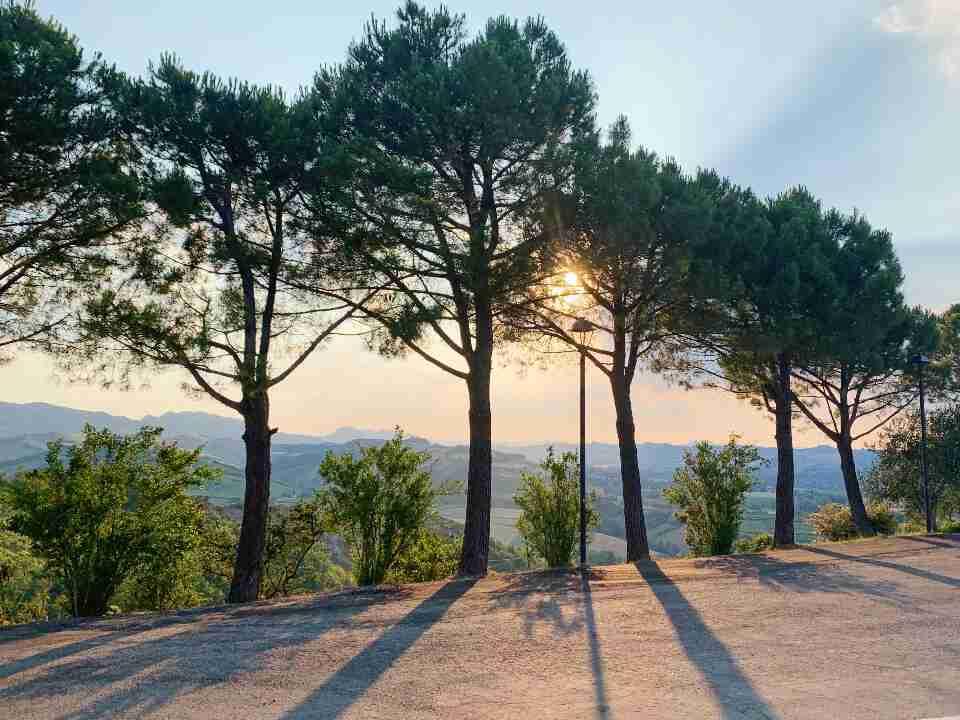 מסעדת Torre del Marino בריזיגלה