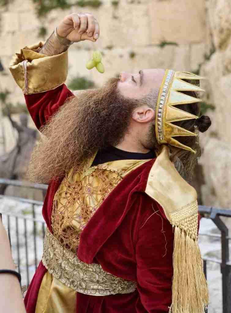 דוד המלך - גלעד המזוקן